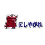 嵐にしやがれ #21 2010年9月18日 アニキの七か条 おさらいしやがれスペシャル! 【動画】